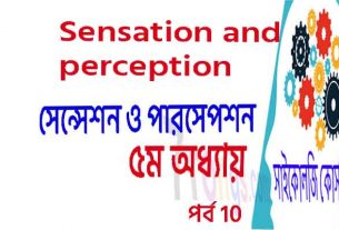 Sensation and Perception Psychology bangla