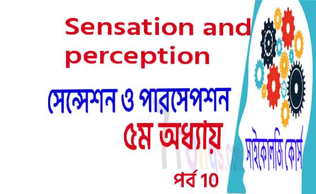 Sensation and Perception Psychology bangla